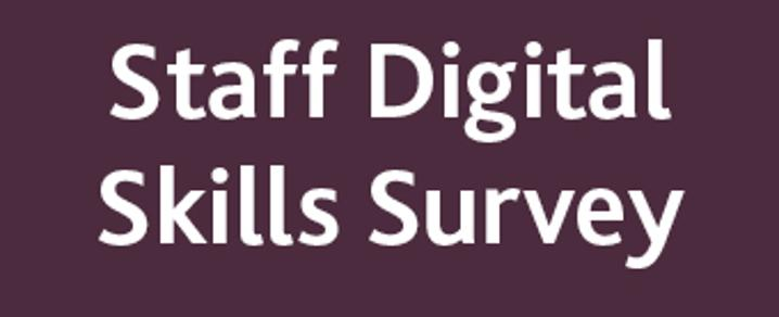 Image for the digital skills survey 2019
