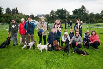Owners and dogs at Pooches in the Park