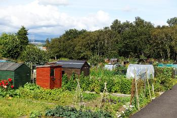 Erskine Community Allotments