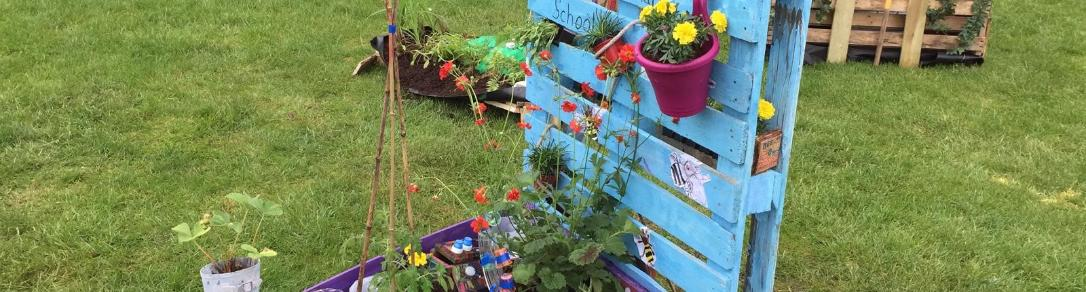 The pallet garden created by Bishopton PS pupils